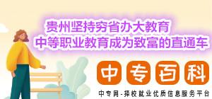 贵州坚持穷省办大教育中等职业教育成为致富的直通车