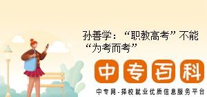 """孙善学:""""职教高考""""不能""""为考而考"""""""